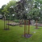 Renovatie landschappelijke achtertuin (9) (Medium)